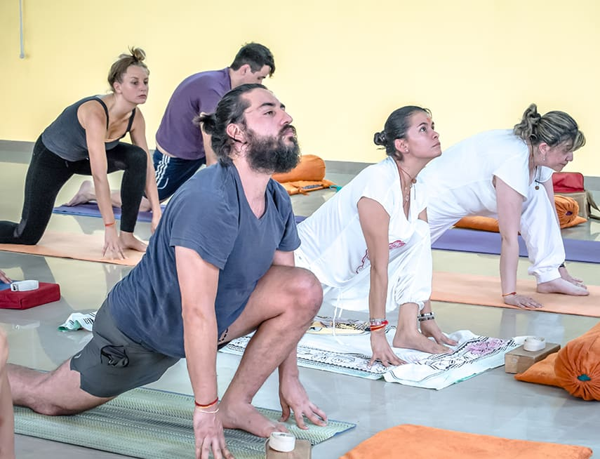 200 hour vinyasa yoga teacher training rishikesh